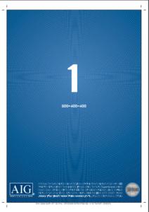 2009-AIG-Israel-Award